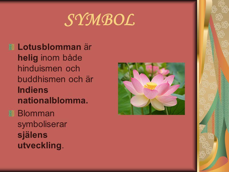 SYMBOL Lotusblomman är helig inom både hinduismen och buddhismen och är Indiens nationalblomma. Blomman symboliserar själens utveckling.