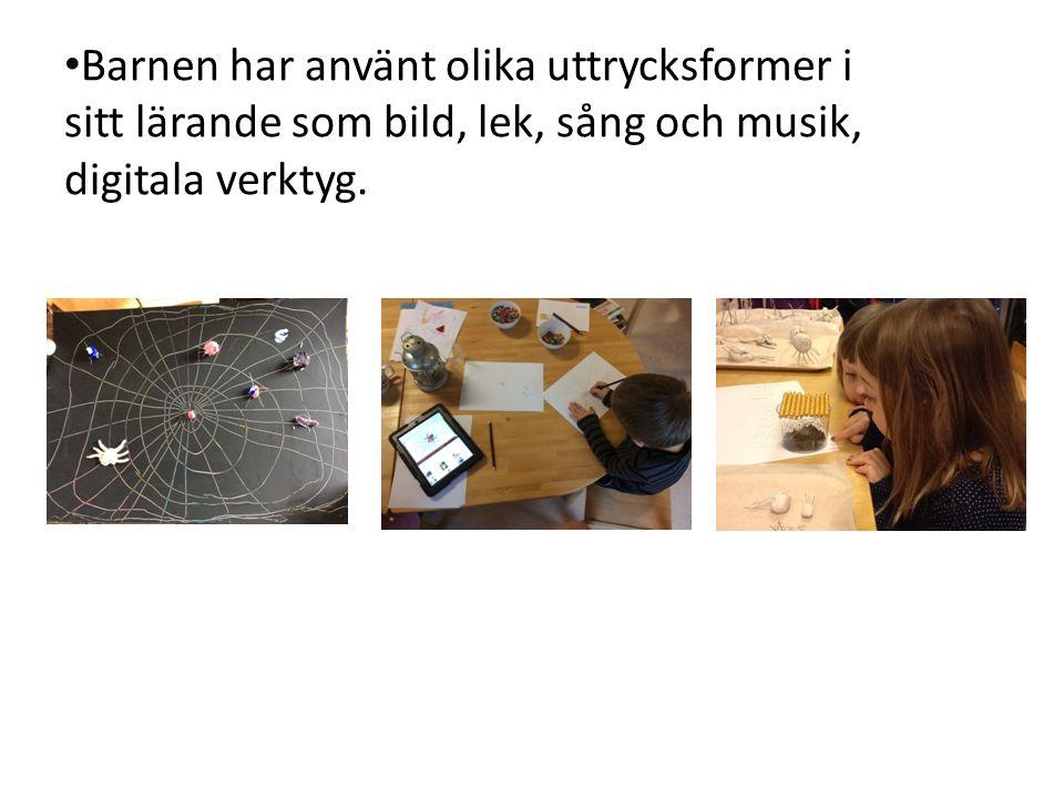 Barnen har använt olika uttrycksformer i sitt lärande som bild, lek, sång och musik, digitala verktyg.