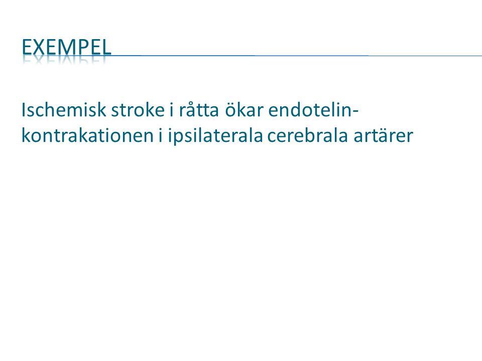 Ischemisk stroke i råtta ökar endotelin- kontrakationen i ipsilaterala cerebrala artärer