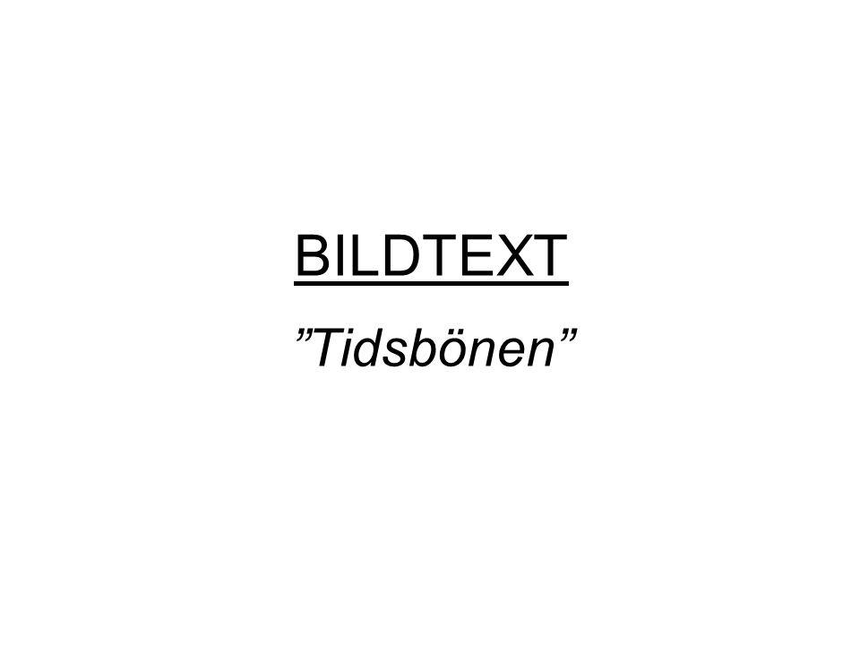 """BILDTEXT """"Tidsbönen"""""""