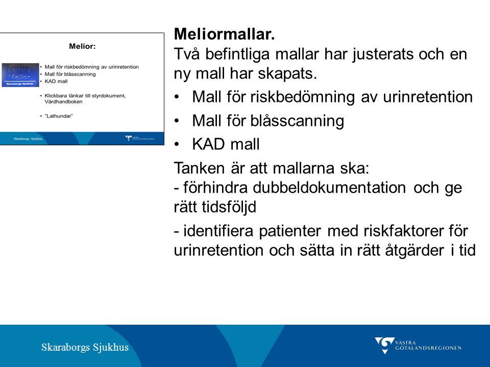 Skaraborgs Sjukhus Meliormallar. Två befintliga mallar har justerats och en ny mall har skapats.