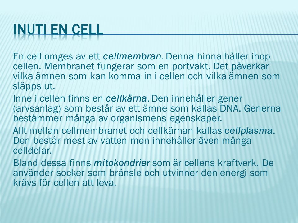 En cell omges av ett cellmembran. Denna hinna håller ihop cellen.