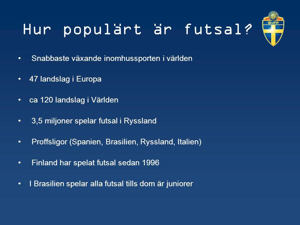 Nuläge sverige 120 000 licensierade spelare Lokala ligaspel (Göteborg, Örebro, Stockholm, Västerbotten) DM – futsal (herr, dam, ungdom) Regionala seriespel (Umbro Futsal League) SM – futsal (herr, dam, ungdom)