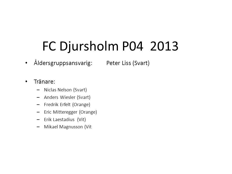 FC Djursholm P04 2013 Åldersgruppsansvarig:Peter Liss (Svart) Tränare: – Niclas Nelson (Svart) – Anders Wiesler (Svart) – Fredrik Erfelt (Orange) – Eric Mitteregger (Orange) – Erik Laestadius (Vit) – Mikael Magnusson (Vit
