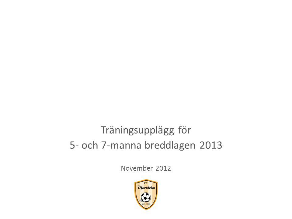 Träningsupplägg för 5- och 7-manna breddlagen 2013 November 2012