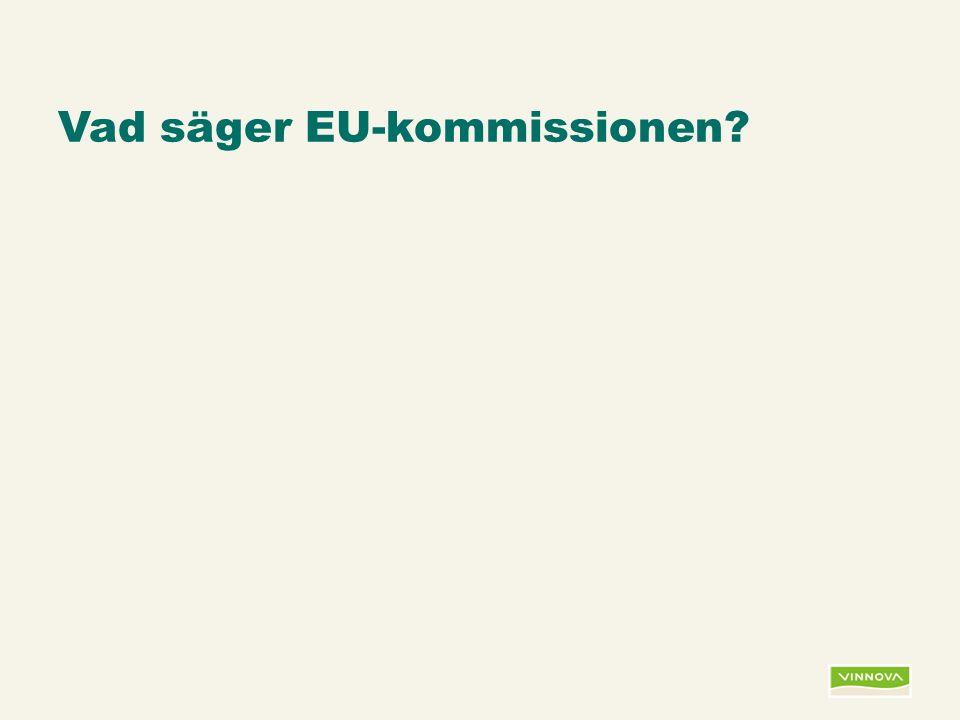 Infogad sidfot, datum och sidnummer syns bara i utskrift (infoga genom fliken Infoga -> Sidhuvud/sidfot) Vad säger EU-kommissionen