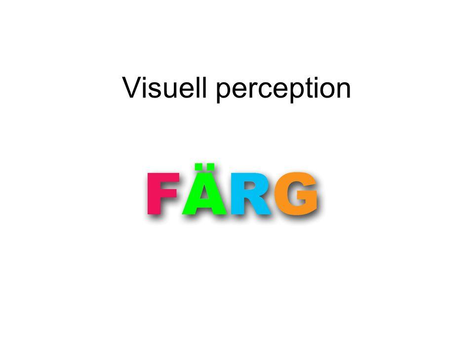 Efterbilder i ögat En stark färg tröttar ut färgreceptorerna (som kallas tappar) i ögat om den fixeras i cirka en minut.