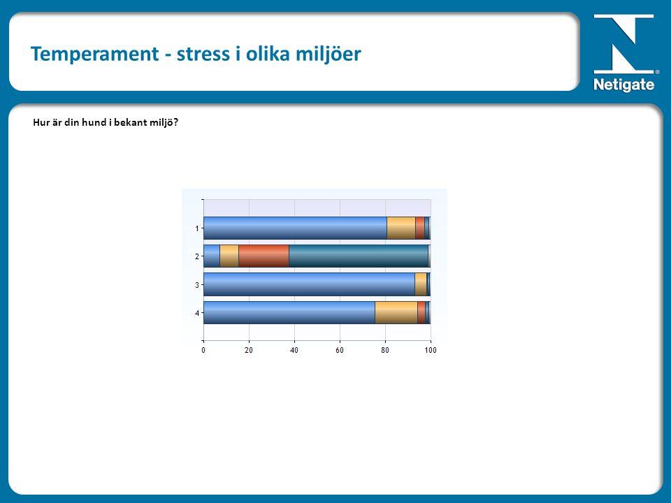 Hur är din hund i bekant miljö Temperament - stress i olika miljöer