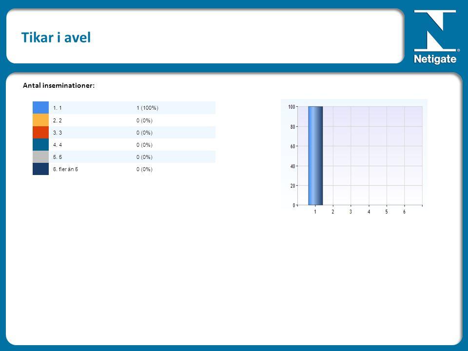 Tikar i avel Antal inseminationer: 1. 11 (100%) 2. 20 (0%) 3. 30 (0%) 4. 40 (0%) 5. 50 (0%) 6. fler än 50 (0%)