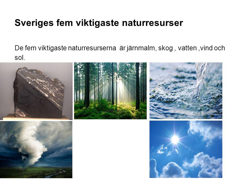 Sveriges fem viktigaste naturresurser De fem viktigaste naturresurserna är järnmalm, skog, vatten,vind och sol.