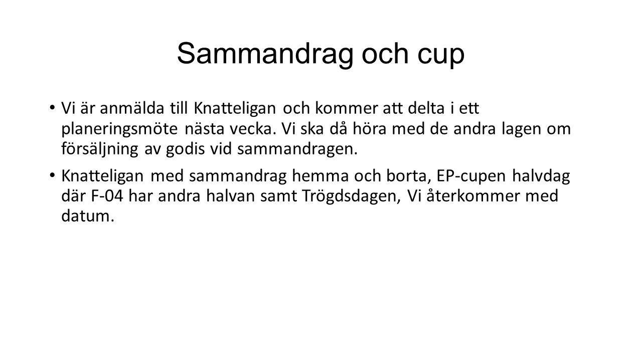 Sammandrag och cup Vi är anmälda till Knatteligan och kommer att delta i ett planeringsmöte nästa vecka. Vi ska då höra med de andra lagen om försäljn