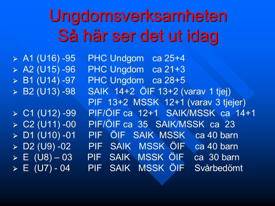 Ungdomsverksamheten Så här ser det ut idag   A1 (U16) -95 PHC Undgom ca 25+4   A2 (U15) -96 PHC Ungdom ca 21+3   B1 (U14) -97 PHC Ungdom ca 28+5   B2 (U13) -98 SAIK 14+2 ÖIF 13+2 (varav 1 tjej) PIF 13+2 MSSK 12+1 (varav 3 tjejer)   C1 (U12) -99 PIF/ÖIF ca 12+1 SAIK/MSSK ca 14+1   C2 (U11) -00 PIF/ÖIF ca 35 SAIK/MSSK ca 23   D1 (U10) -01 PIF ÖIF SAIK MSSK ca 40 barn   D2 (U9) -02 PIF SAIK MSSK ÖIF ca 40 barn   E (U8) – 03 PIF SAIK MSSK ÖIF ca 30 barn   E (U7) - 04 PIF SAIK MSSK ÖIF Svårbedömt