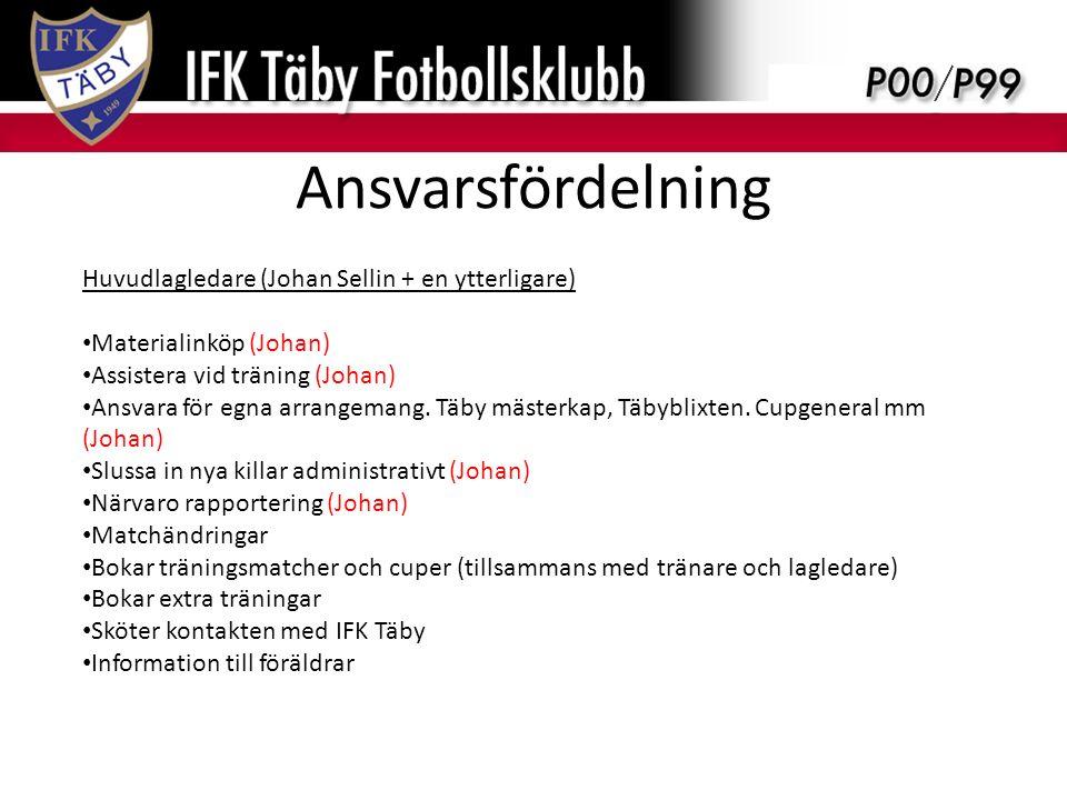Ansvarsfördelning Huvudlagledare (Johan Sellin + en ytterligare) Materialinköp (Johan) Assistera vid träning (Johan) Ansvara för egna arrangemang.