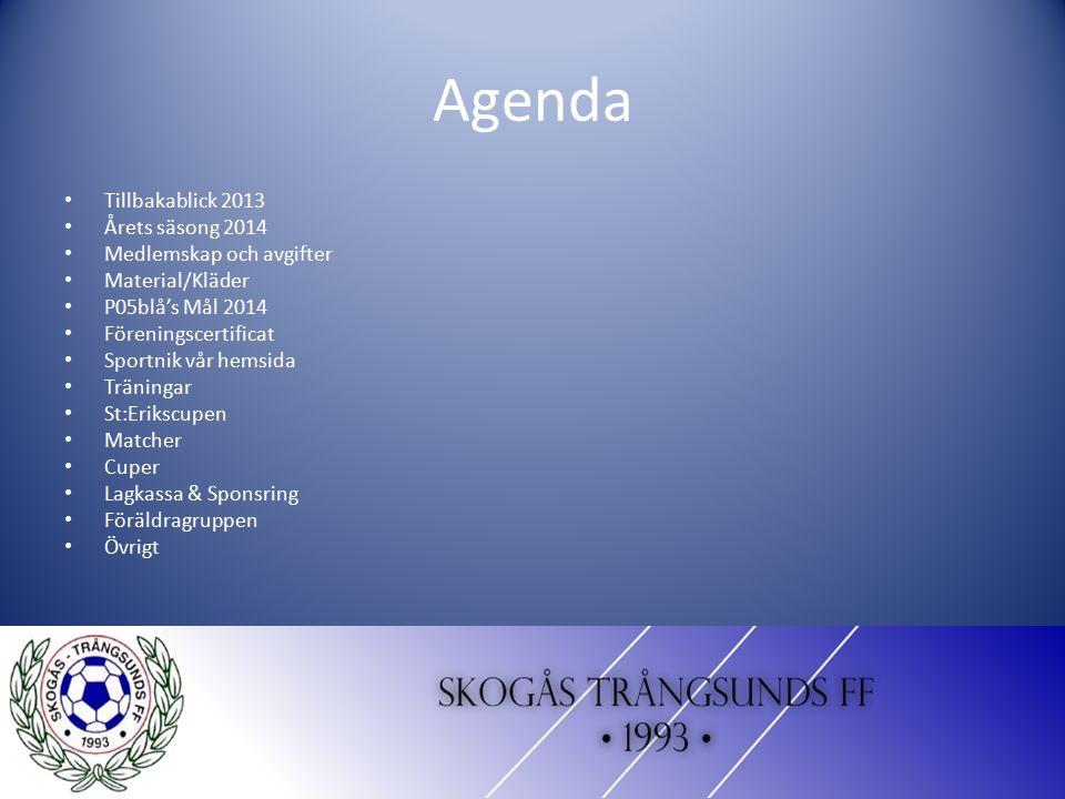 Agenda Tillbakablick 2013 Årets säsong 2014 Medlemskap och avgifter Material/Kläder P05blå's Mål 2014 Föreningscertificat Sportnik vår hemsida Träning