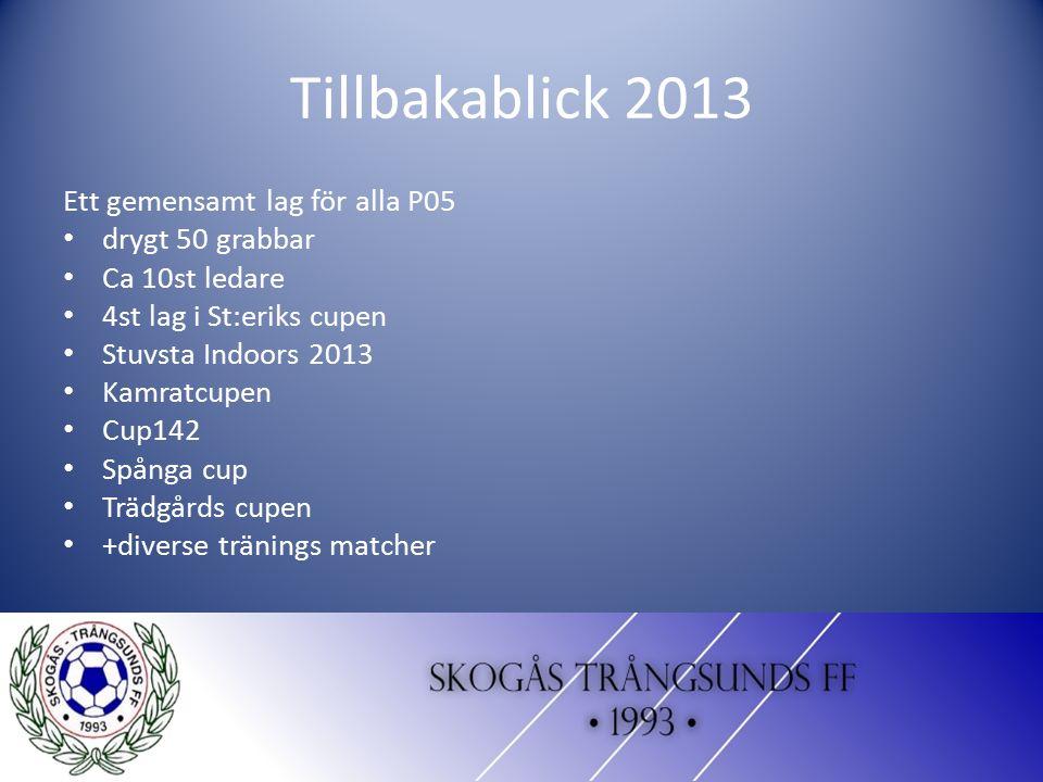 Tillbakablick 2013 Ett gemensamt lag för alla P05 drygt 50 grabbar Ca 10st ledare 4st lag i St:eriks cupen Stuvsta Indoors 2013 Kamratcupen Cup142 Spå