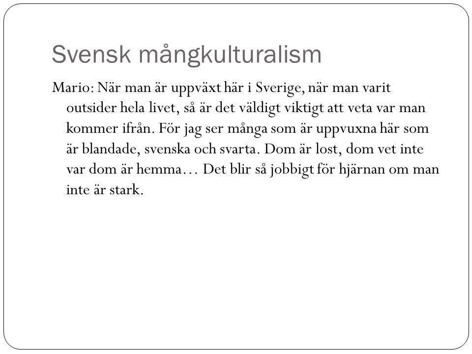 Svensk mångkulturalism Mario: När man är uppväxt här i Sverige, när man varit outsider hela livet, så är det väldigt viktigt att veta var man kommer i