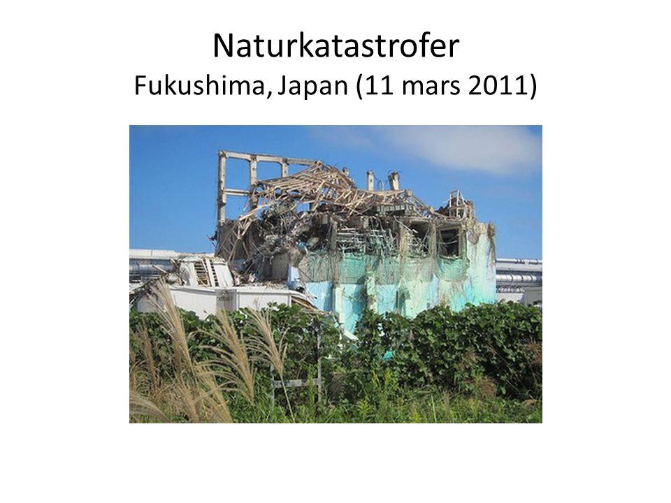 Naturkatastrofer Fukushima, Japan (11 mars 2011)