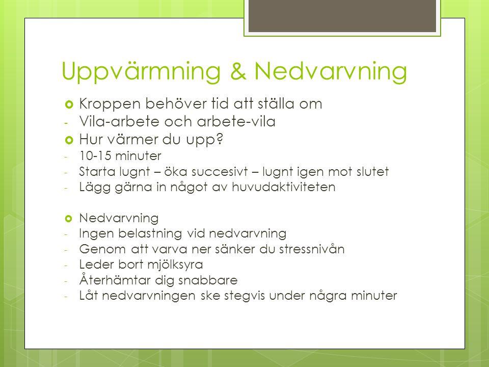 Uppvärmning & Nedvarvning  Kroppen behöver tid att ställa om - Vila-arbete och arbete-vila  Hur värmer du upp.