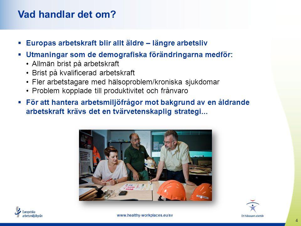5 www.healthy-workplaces.eu/sv Förebyggande insatser genom hela arbetslivet – helhetsperspektiv  Människors arbetsförhållanden under tidiga perioder av livet påverkar deras hälsa senare i livet  Arbetsrelaterade olyckor, hälsoproblem och arbetssjukdomar måste förebyggas genom hela arbetslivet  Helhetsperspektiv som omfattar följande: Arbetsmiljö och organisation Utbildning och livslångt lärande Ledarskap Balans mellan arbete och fritid Motivation Karriärutveckling