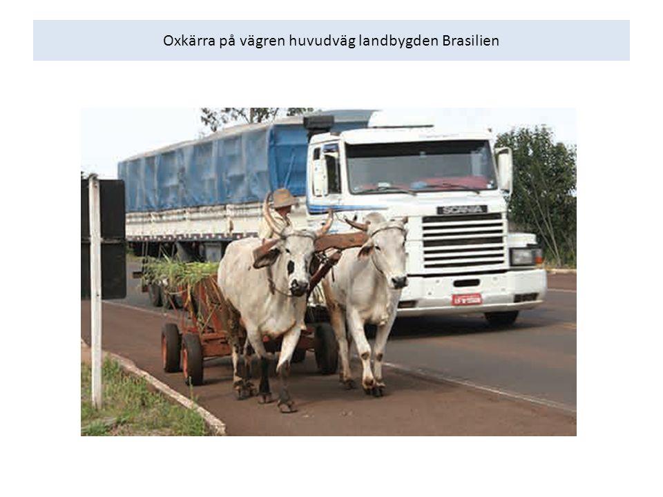Oxkärra på vägren huvudväg landbygden Brasilien