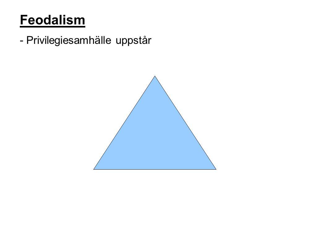 Feodalism - Privilegiesamhälle uppstår