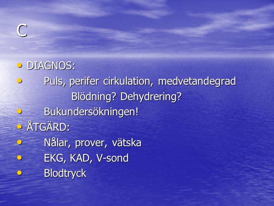 C DIAGNOS: DIAGNOS: Puls, perifer cirkulation, medvetandegrad Puls, perifer cirkulation, medvetandegrad Blödning.
