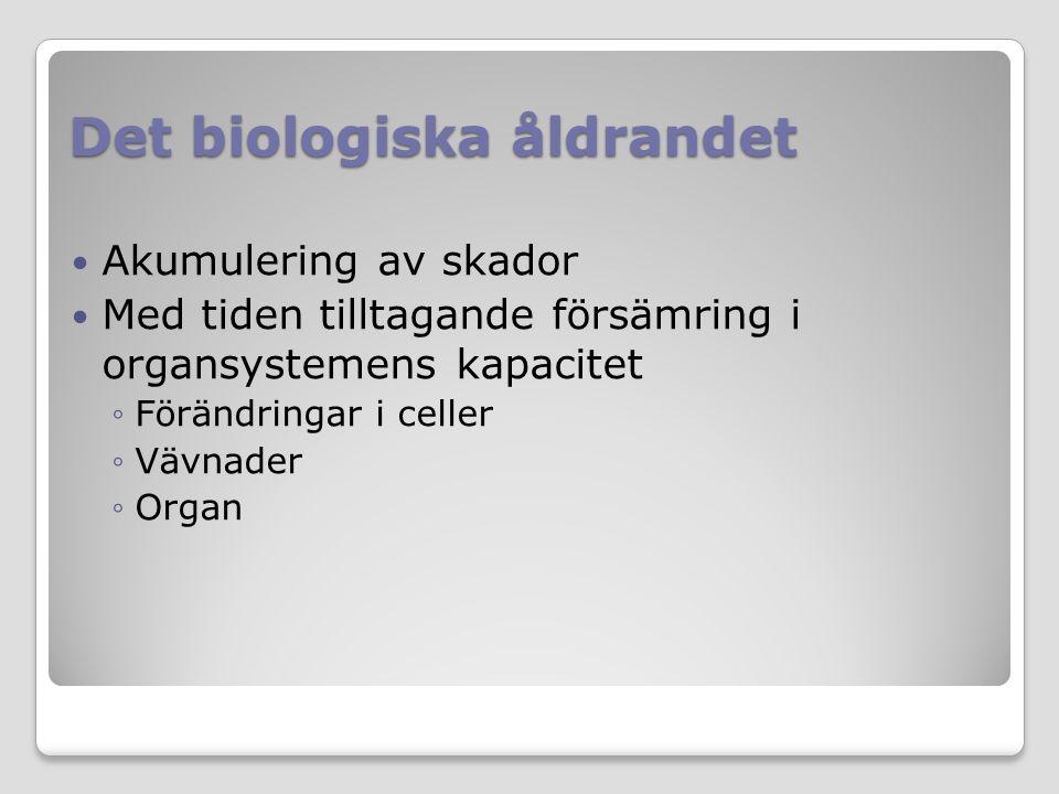 Det biologiska åldrandet Akumulering av skador Med tiden tilltagande försämring i organsystemens kapacitet ◦Förändringar i celler ◦Vävnader ◦Organ