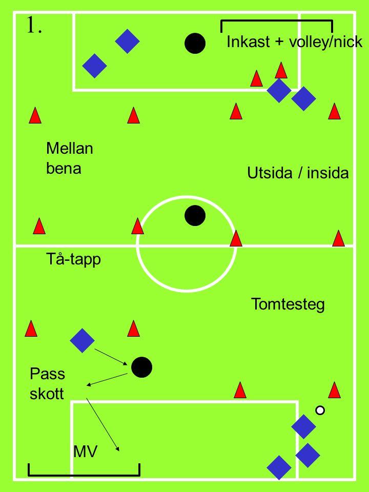 Tomtesteg Mellan bena Utsida / insida MV Inkast + volley/nick Pass skott Tå-tapp 1.