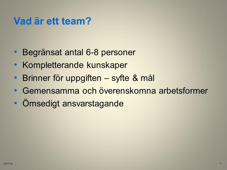 Vad är ett team.