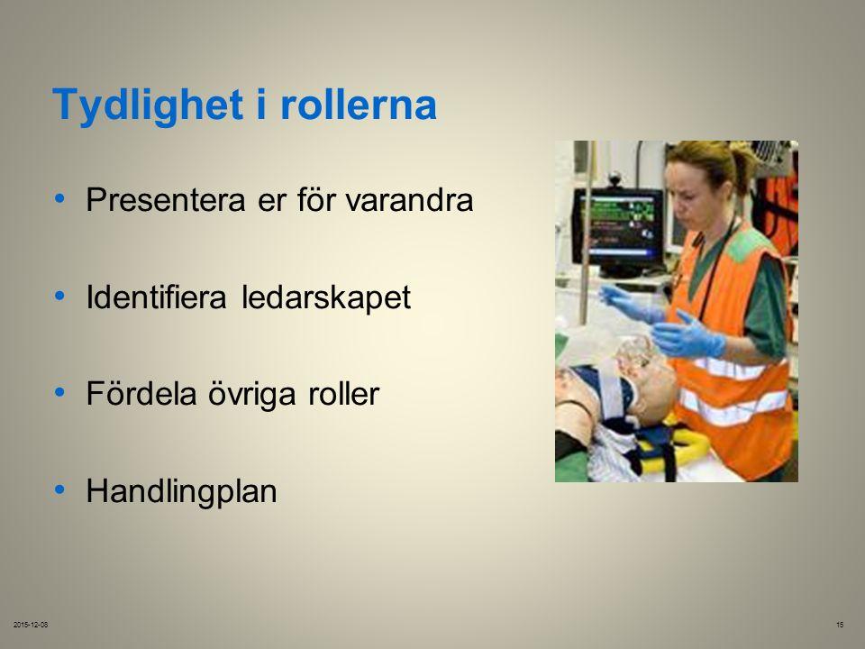 Tydlighet i rollerna Presentera er för varandra Identifiera ledarskapet Fördela övriga roller Handlingplan 2015-12-0815