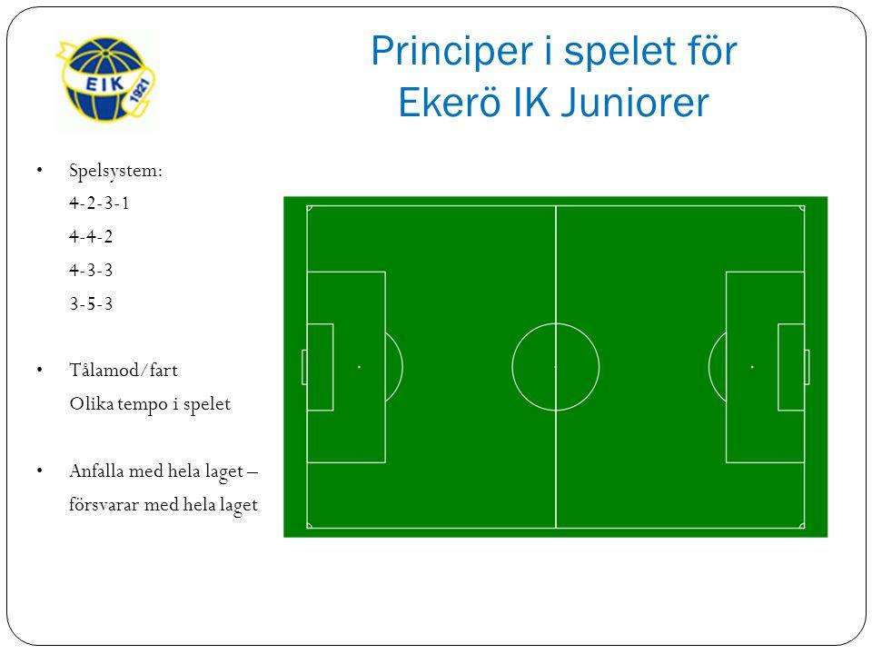 Principer i spelet för Ekerö IK Juniorer Spelsystem: 4-2-3-1 4-4-2 4-3-3 3-5-3 Tålamod/fart Olika tempo i spelet Anfalla med hela laget – försvarar med hela laget