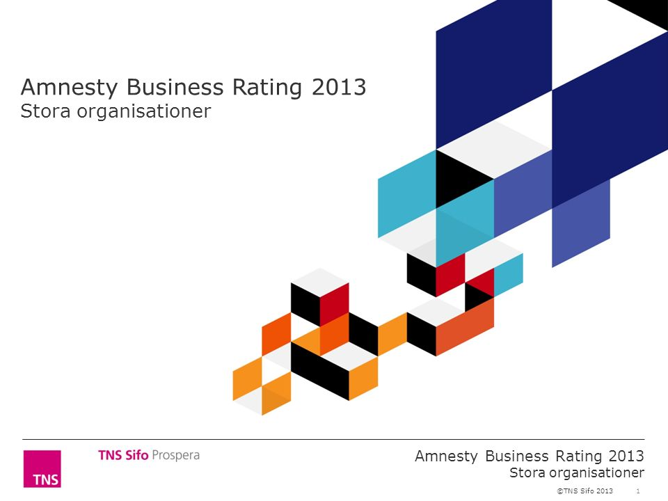 1 Amnesty Business Rating 2013 Stora organisationer ©TNS Sifo 2013 Amnesty Business Rating 2013 Stora organisationer