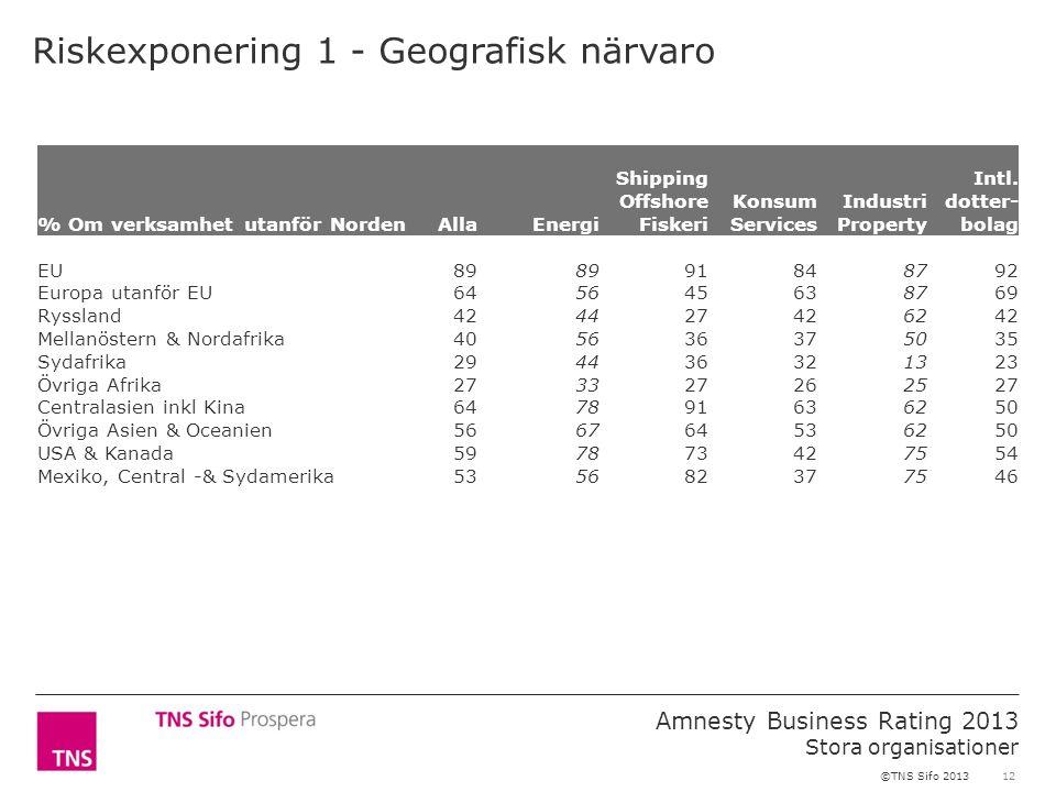 12 Amnesty Business Rating 2013 Stora organisationer ©TNS Sifo 2013 Riskexponering 1 - Geografisk närvaro % Om verksamhet utanför NordenAllaEnergi Shi