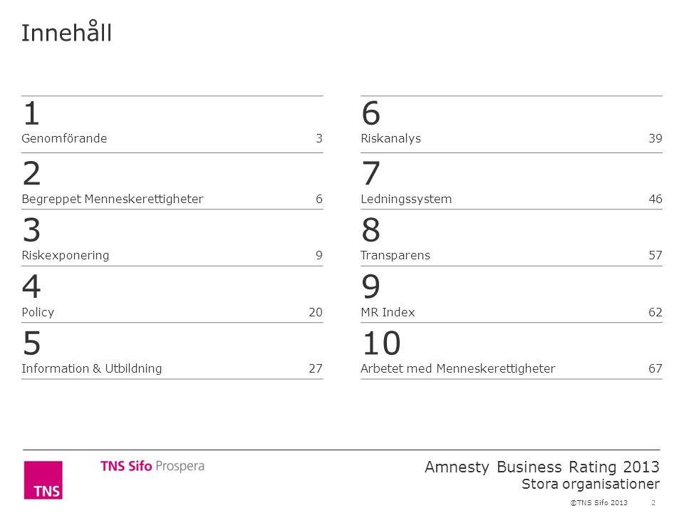 2 Amnesty Business Rating 2013 Stora organisationer ©TNS Sifo 2013 Innehåll 1 Genomförande3 2 Begreppet Menneskerettigheter 6 3 Riskexponering 9 4 Policy 20 5 Information & Utbildning 27 6 Riskanalys39 7 Ledningssystem46 8 Transparens57 9 MR Index62 10 Arbetet med Menneskerettigheter67