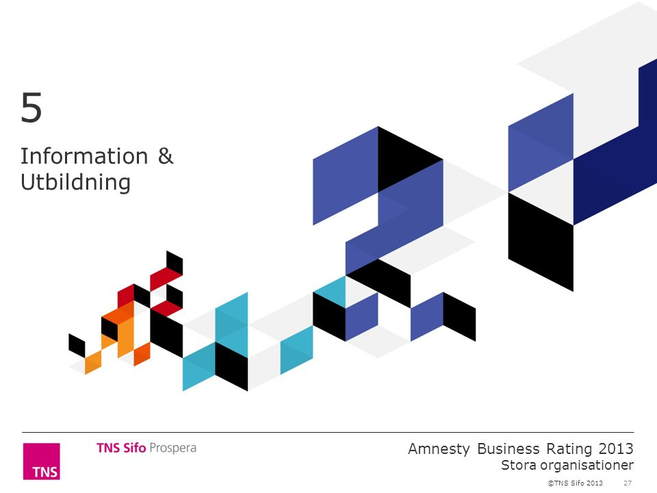 27 Amnesty Business Rating 2013 Stora organisationer ©TNS Sifo 2013 Information & Utbildning 5