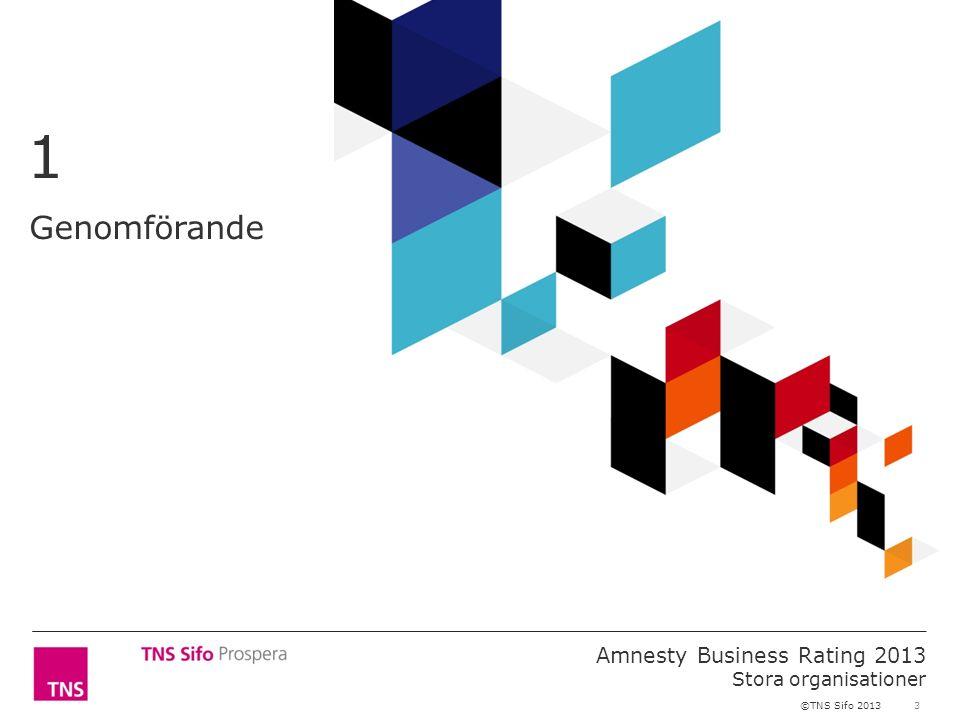 3 Amnesty Business Rating 2013 Stora organisationer ©TNS Sifo 2013 Genomförande 1