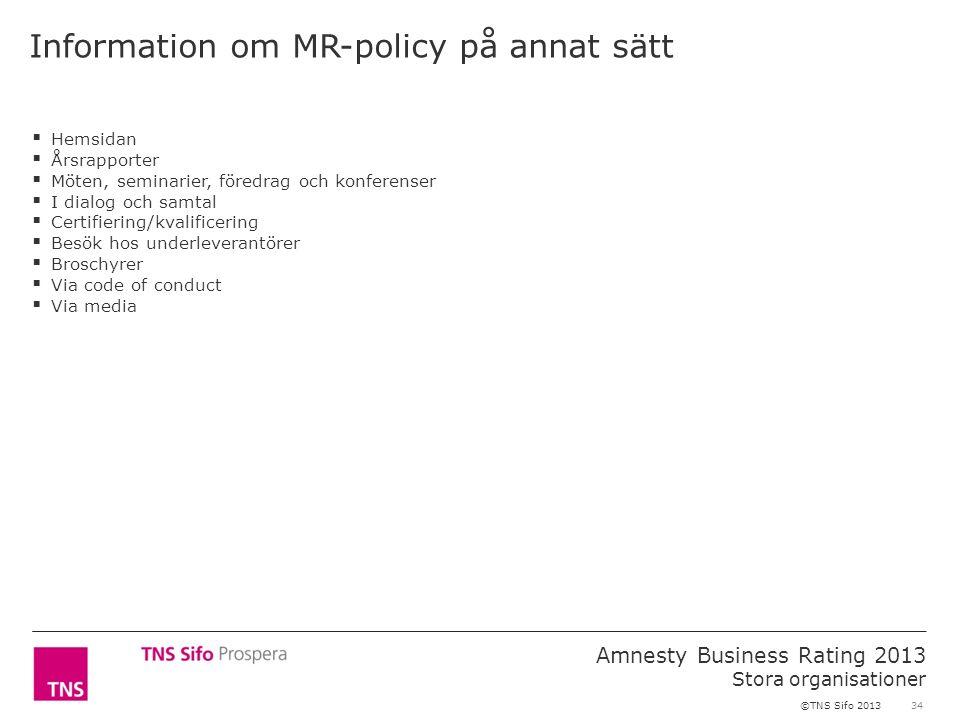 34 Amnesty Business Rating 2013 Stora organisationer ©TNS Sifo 2013 Information om MR-policy på annat sätt  Hemsidan  Årsrapporter  Möten, seminarier, föredrag och konferenser  I dialog och samtal  Certifiering/kvalificering  Besök hos underleverantörer  Broschyrer  Via code of conduct  Via media