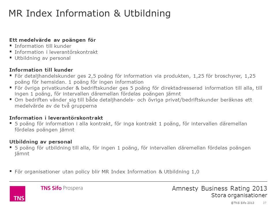 37 Amnesty Business Rating 2013 Stora organisationer ©TNS Sifo 2013 Ett medelvärde av poängen för  Information till kunder  Information i leverantörskontrakt  Utbildning av personal Information till kunder  För detaljhandelskunder ges 2,5 poäng för information via produkten, 1,25 för broschyrer, 1,25 poäng för hemsidan.