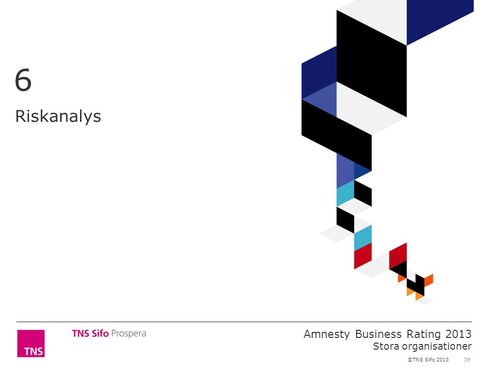 39 Amnesty Business Rating 2013 Stora organisationer ©TNS Sifo 2013 Riskanalys 6