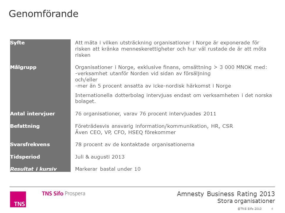 4 Amnesty Business Rating 2013 Stora organisationer ©TNS Sifo 2013 SyfteAtt mäta i vilken utsträckning organisationer i Norge är exponerade för risken att kränka menneskerettigheter och hur väl rustade de är att möta risken MålgruppOrganisationer i Norge, exklusive finans, omsättning > 3 000 MNOK med: -verksamhet utanför Norden vid sidan av försäljning och/eller -mer än 5 procent ansatta av icke-nordisk härkomst i Norge Internationella dotterbolag intervjuas endast om verksamheten i det norska bolaget.