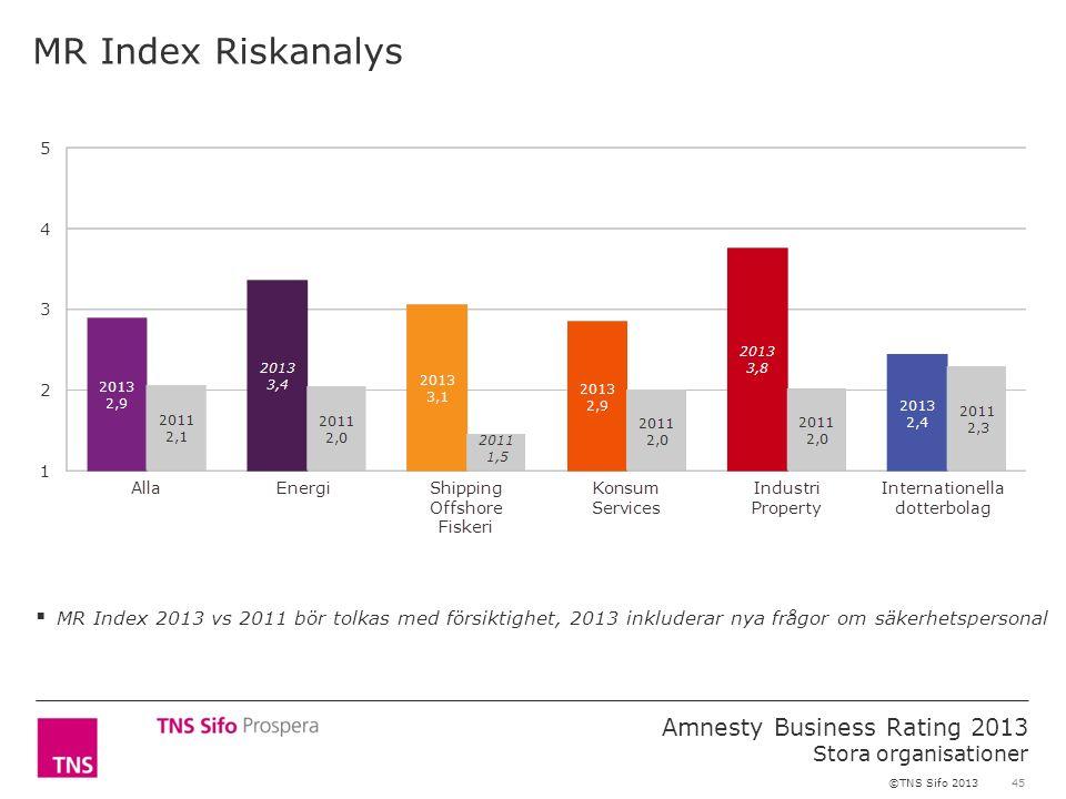45 Amnesty Business Rating 2013 Stora organisationer ©TNS Sifo 2013 MR Index Riskanalys  MR Index 2013 vs 2011 bör tolkas med försiktighet, 2013 inkluderar nya frågor om säkerhetspersonal