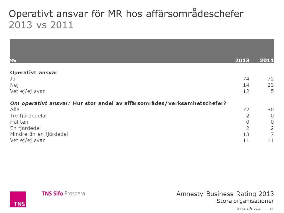 54 Amnesty Business Rating 2013 Stora organisationer ©TNS Sifo 2013 Operativt ansvar för MR hos affärsområdeschefer 2013 vs 2011 %2013 2011 Operativt