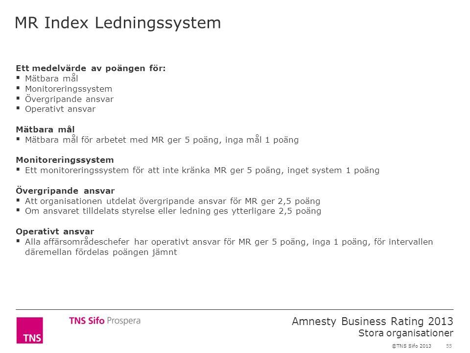 55 Amnesty Business Rating 2013 Stora organisationer ©TNS Sifo 2013 Ett medelvärde av poängen för:  Mätbara mål  Monitoreringssystem  Övergripande