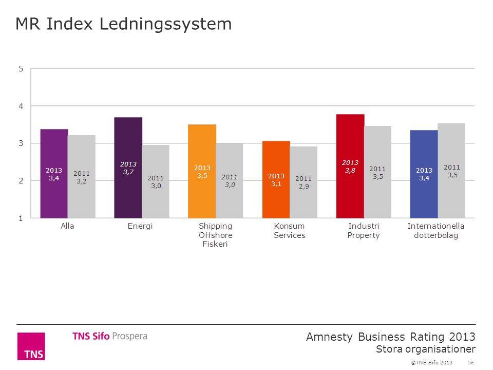 56 Amnesty Business Rating 2013 Stora organisationer ©TNS Sifo 2013 MR Index Ledningssystem