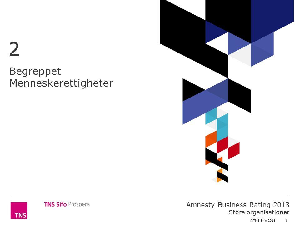 6 Amnesty Business Rating 2013 Stora organisationer ©TNS Sifo 2013 Begreppet Menneskerettigheter 2