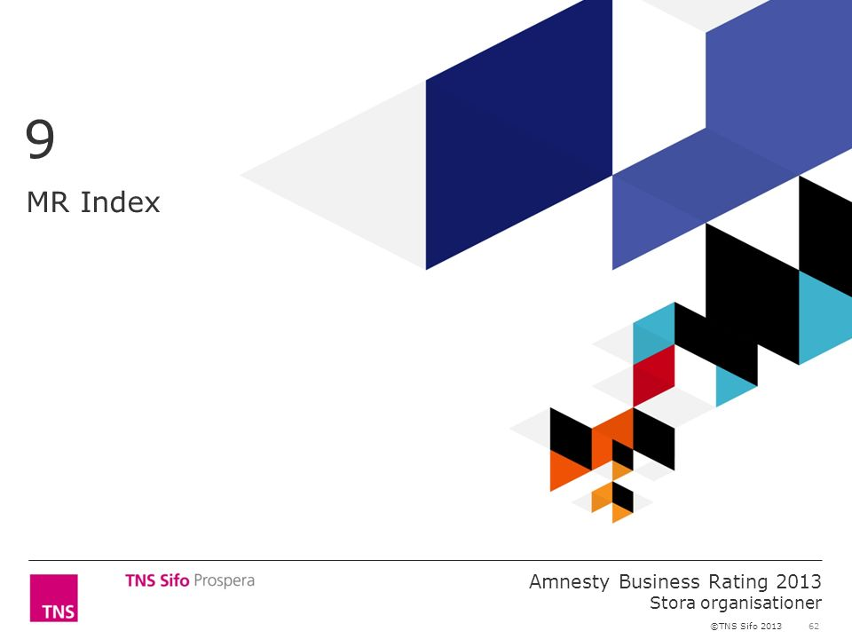 62 Amnesty Business Rating 2013 Stora organisationer ©TNS Sifo 2013 MR Index 9