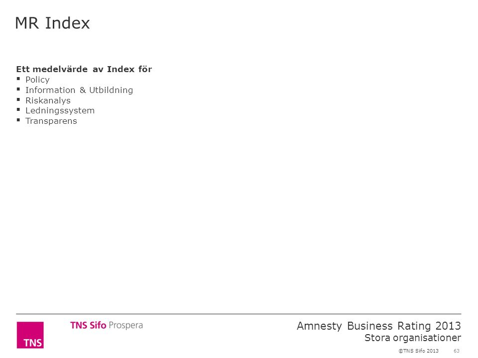 63 Amnesty Business Rating 2013 Stora organisationer ©TNS Sifo 2013 Ett medelvärde av Index för  Policy  Information & Utbildning  Riskanalys  Ledningssystem  Transparens MR Index