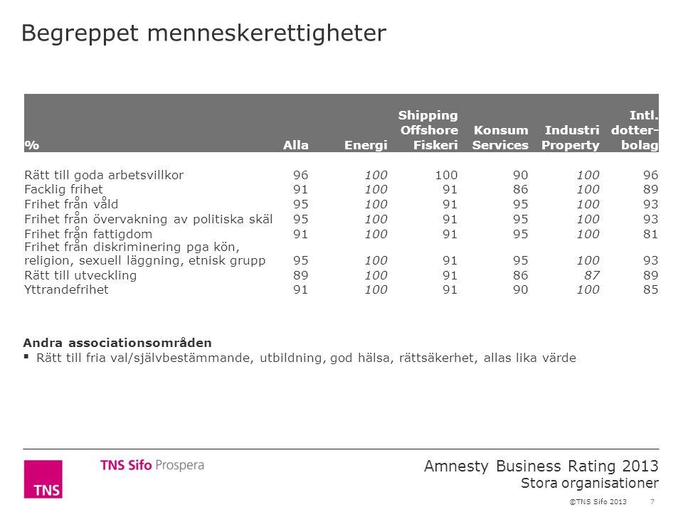 7 Amnesty Business Rating 2013 Stora organisationer ©TNS Sifo 2013 Begreppet menneskerettigheter %AllaEnergi Shipping Offshore Fiskeri Konsum Services