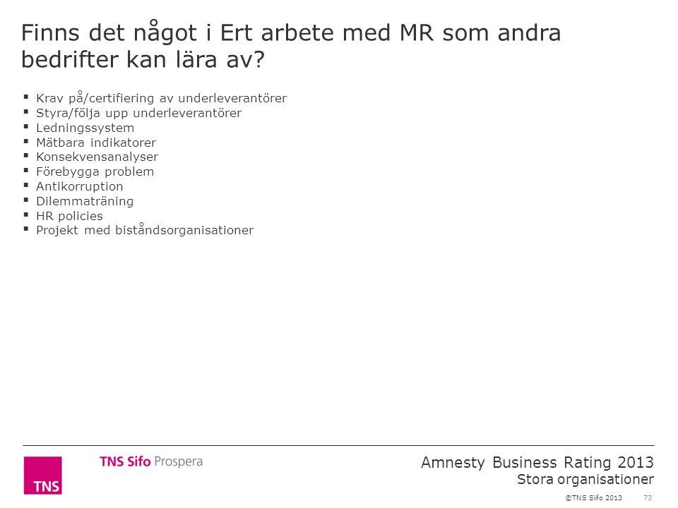 73 Amnesty Business Rating 2013 Stora organisationer ©TNS Sifo 2013 Finns det något i Ert arbete med MR som andra bedrifter kan lära av?  Krav på/cer