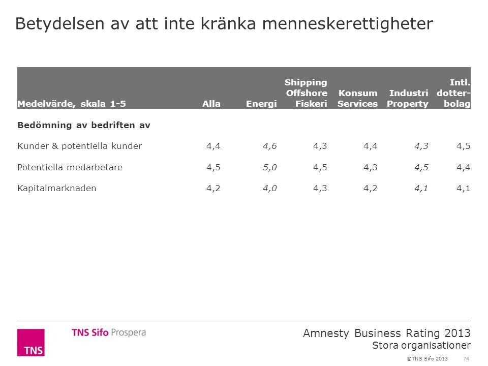 74 Amnesty Business Rating 2013 Stora organisationer ©TNS Sifo 2013 Betydelsen av att inte kränka menneskerettigheter Medelvärde, skala 1-5AllaEnergi Shipping Offshore Fiskeri Konsum Services Industri Property Intl.